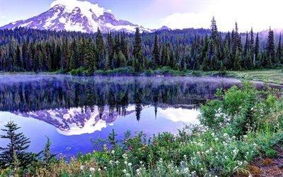 вода, горы, деревья, лес, небо, снег, широкоформатные