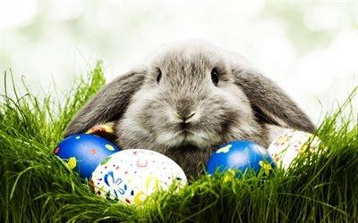 крашанки, крашанка, пасхальные яйца, Пасха, Великодень