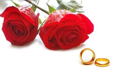 свадьба, приглашение, фон, кольца