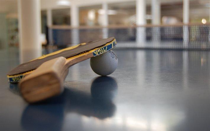 Настільний теніс, Настольный теннис