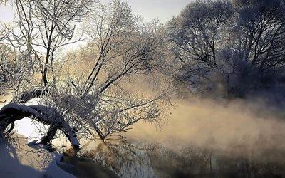 природа, туман, река, дерево, лед, холод, мороз, испарение, рассвет, утро, иней