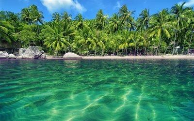лето, море, тропики, пальмы, курорт
