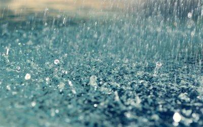 дождь, капли, земля, ливень, дощ, краплі, злива