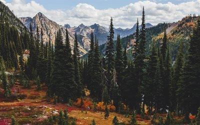 горы, лес, осень, горный пейзаж, осенний пейзаж