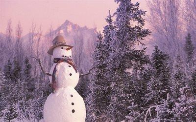 природа, зима, деревья, снеговик