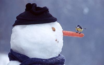 зима, снеговик, нос, морковь, птица, синица