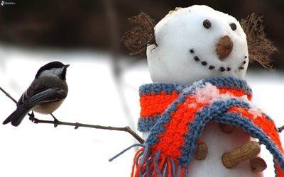 зима, снеговик, птица