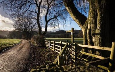 Грунтовая дорога, Изгородь, Деревья, Национальный парк Пик - Дистрикт, Англия, Dirt road, Trees, Peak District National Park, England