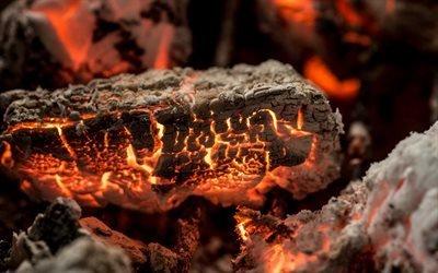 тлеющий уголь, огонь, костер, пепел, жар
