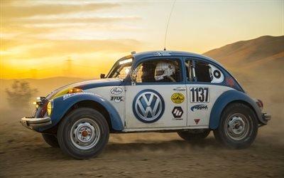 Фольксваген, Баха 1000, Ралли, Гонка, 2017, Volkswagen, Beetles, Baja 1000, Desert race