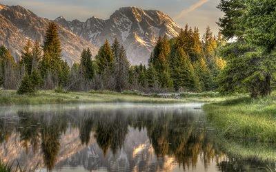 горы, отражение, лес, река, природа