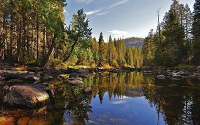 камни, природа, лес, озеро