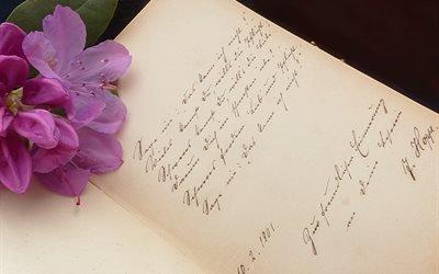 цветок, блокнот, текст