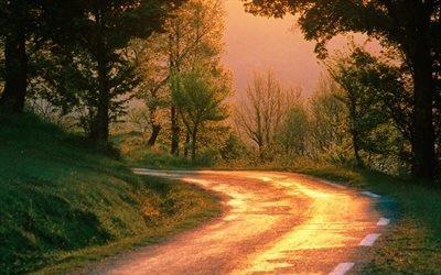 прирорда, осень, дорога, поворот, лес, утро