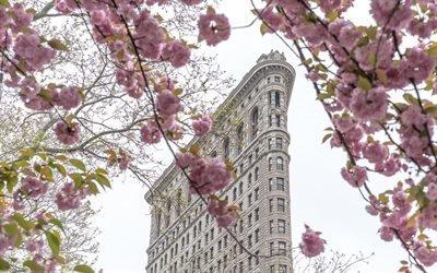 Весна, Цветение, Нью-Йорк