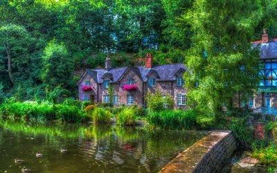 Лимм, пруд, лето, HDR, Англия, Великобритания