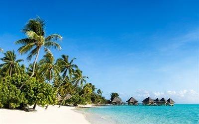 Мальдивы, лето, пальмы, тропические острова, океан, пляж, бунгало, летние путешествие