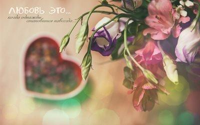 цветы, сердце, боке