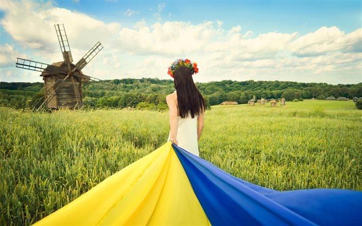 Україна, поле, млини, українка, прапор України, Пирогово, Київ, Украина, мельницы, украинка, флаг Украины, Киев