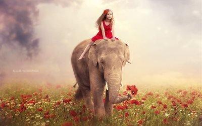 природа, лето, поле, маки, цветы, животное, слон, девочка