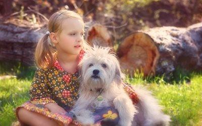 природа, лето, трава, брёвна, девочка, животное, собака, пёс