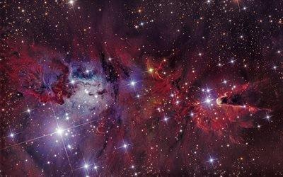 Космос, Созвездие Единорога, Туманность Фокс-Мех