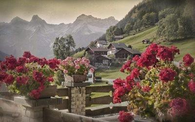 природа, пейзаж, деревня, Австрия, горы, Тироль, дома, Альпы, цветы