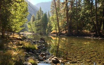 природа, горы, лес, горная река, деревья, камни, вода