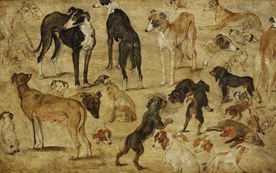 Ян Брейгель Старший, Jan Brueghel, фламандский художник, Эскизы собак, 1616
