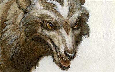 волк, морда, рисунок