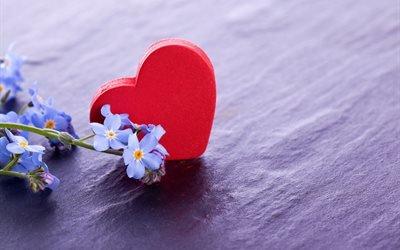 сердце, цветы, незабудки