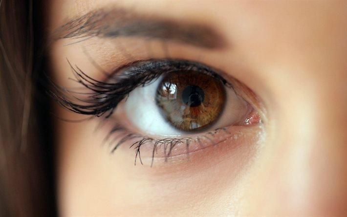 face, girl, eyes, карі очі, око, глаз