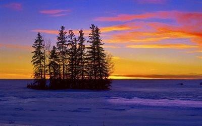 природа, зима, озеро, деревья, лед, островок, небо, облака, закат