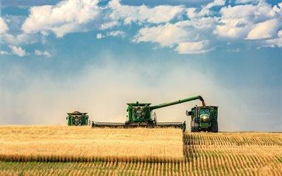 збирання врожаю, комбайн, трактори, поле з пшеницею, уборка урожая, тракторы, поле с пшеницей