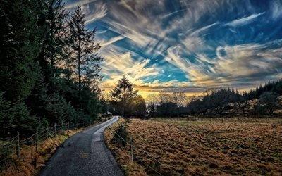 Грунтовая дорога, Лес, Ругаланн, Норвегия, Dirt road, Rogalahd, Norway