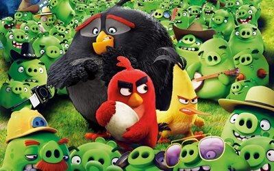 Злые птицы, фильм, Angry Birds, 2016, Red, Chuck, Bomb