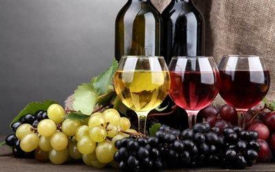 вино, бокалы с вином, белое вино, бутылка вино, красное вино