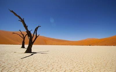 Намиб, пустыня, Африка, 4к, песок, песчаные дюны