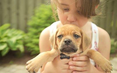 дети, ребёнок, девочка, собака, пёс, щенок