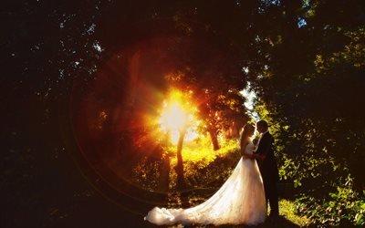 люди, жених, невеста, пара, свадьба, природа, деревья, солнце