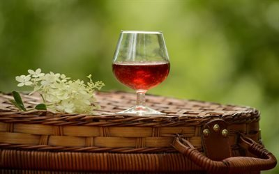 Цветы, Бокал, Красное вино, Пикник