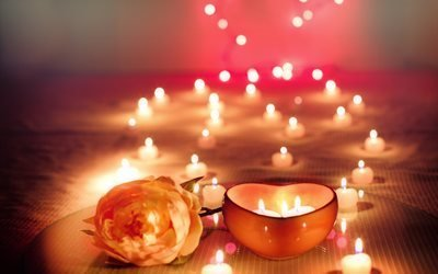 праздник, цветок, роза, свечи