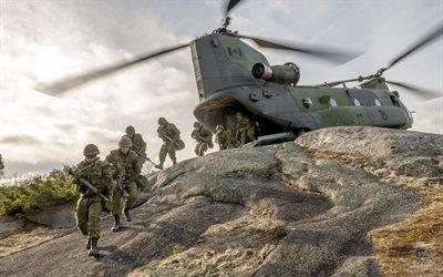 Канада, Армия, Учения, CH-147 Chinook, Тяжёлый военно-транспортный вертолёт