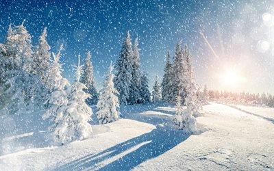 зима, горы, снег, ёлки, голубое небо, мороз, winter, snow