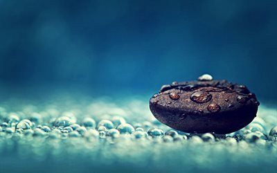 кофейное зерно, капли, рома, кофе