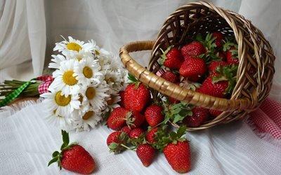 корзина, ягоды, клубника, букет, цветы, ромашки, ткань, вуаль, салфетка, лето