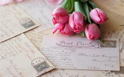 цветы, тюльпаны, письма, конверты