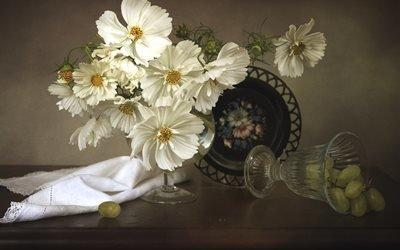 натюрморт, бокал, цветы, космея, ягоды, виноград, салфетка, поднос