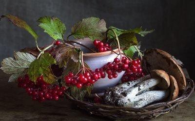 натюрморт, корзинка, грибы, горшок, ветки, калина, ягоды