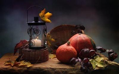 натюрморт, столик, ткань, мешковина, лампа, свеча, овощи, тыквы, листья, мышь, мышка, грызун, зверушка